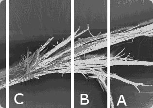 Dust or trim split end?