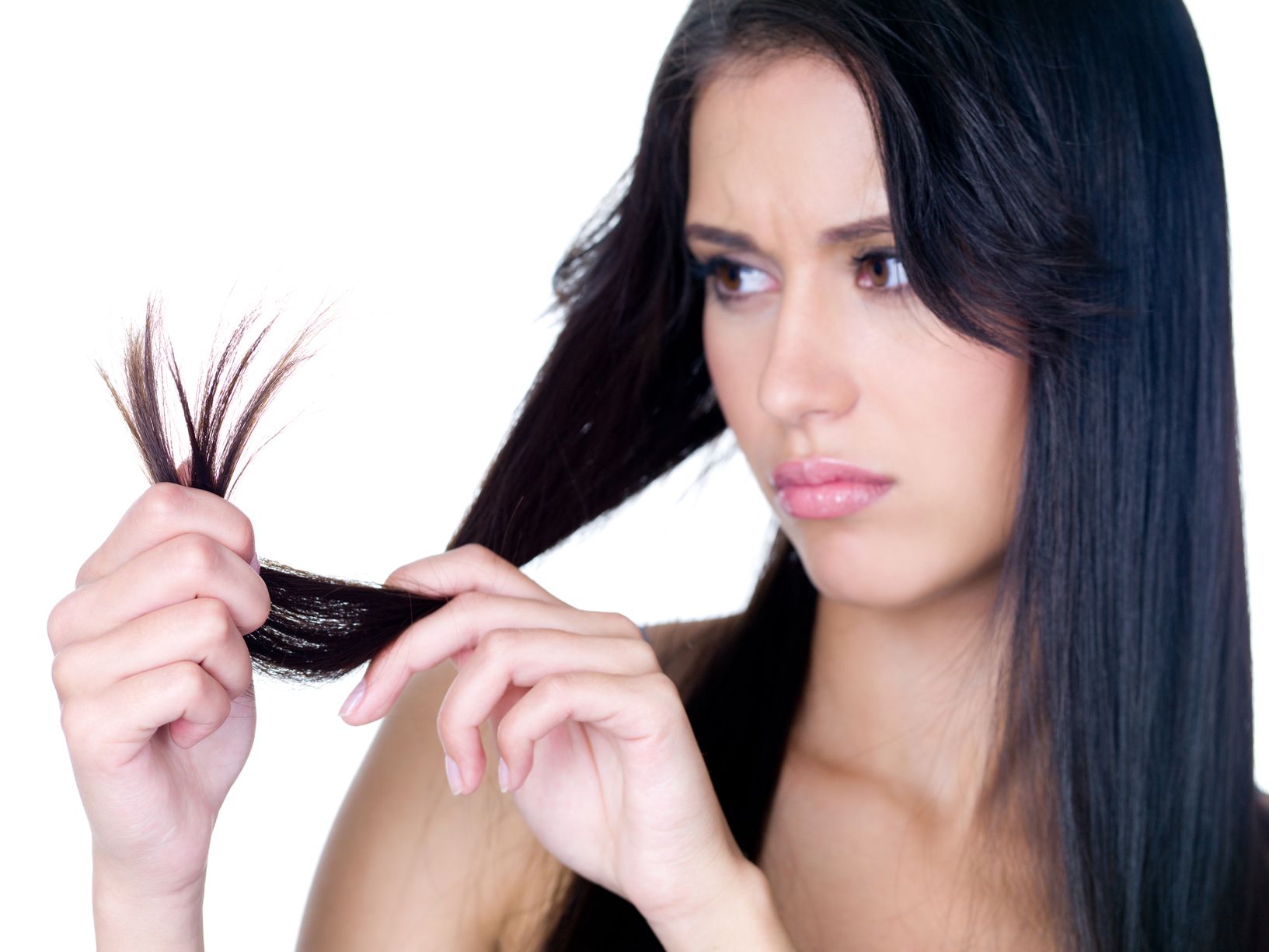 Terminal Length - How Long Can The Average Person's Hair Grow? | How